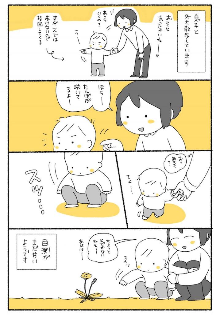 f:id:satouimoko:20170430233623j:plain