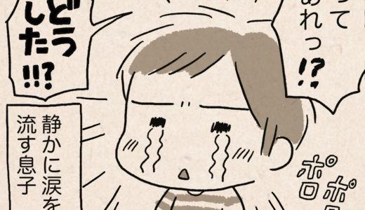 ポケモンで涙する息子